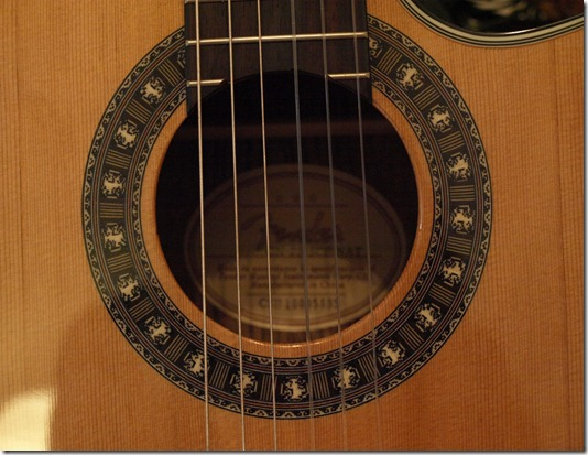 Korpus der Gitarre