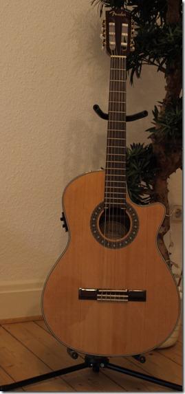 Frontansicht der Gitarre
